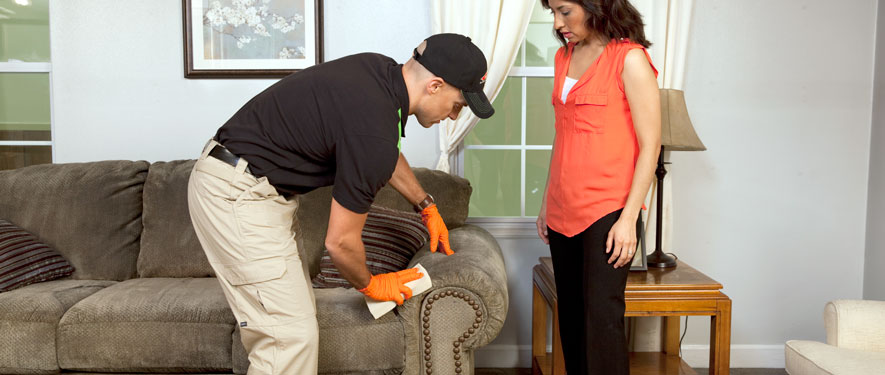 Marshfield, MA carpet upholstery cleaning