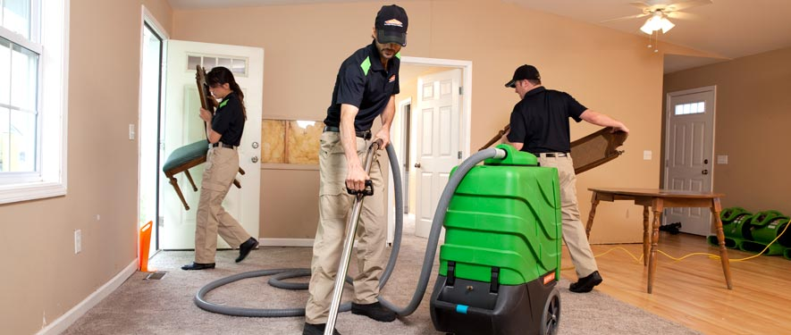 Marshfield, MA cleaning services